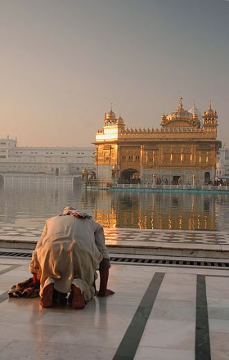 382px-A_devotee_at_Gurudwara_Harmandir_Sahib,_Punjab