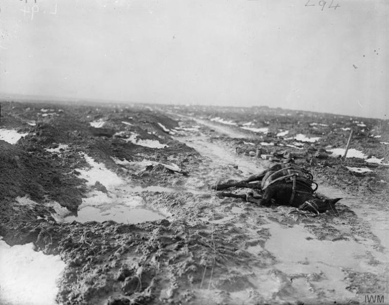 The British Army on the Western Front 1914-18. Muddy tracks through the former battlefield. Commons. Photographer: David McLellan, Second Lieutenant