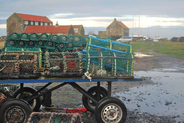 1024px-Lindisfarne_Lobster_Pots