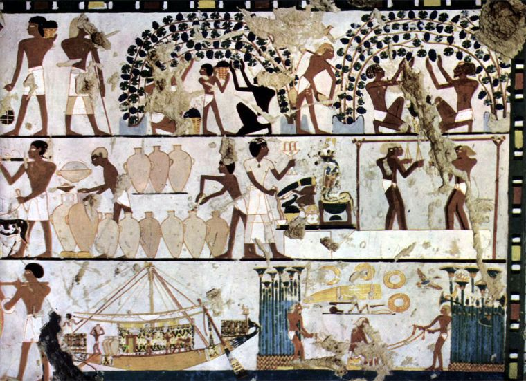 Grape cultivation and wine making in ancient Egypt. Author: Agyptischer Maler in the 1500s. Public Domain.