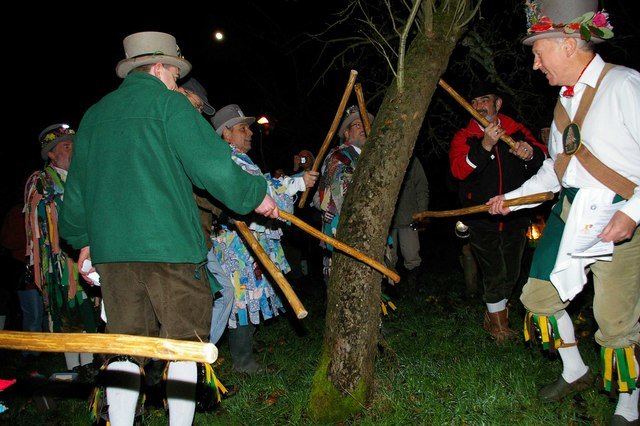 Broadmarsh Morris men beating the apple trees with sticks to drive out evil spirits that may spoil the crop. Author: Glyn Baker. geog.org.uk Creative Commons