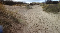 129 Path through the dunes