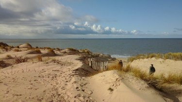 142 Dunes and Sea