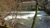 Weir on the Nidd