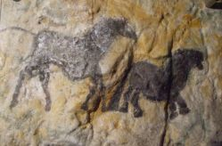 Cave Painting - Cox's Cave R