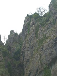 Gorge from bus 4 +