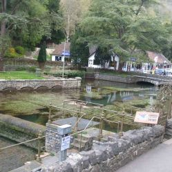 Ponds 2