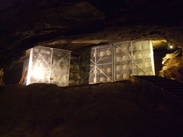 Cheddar Cheese stored in Gough's Cave