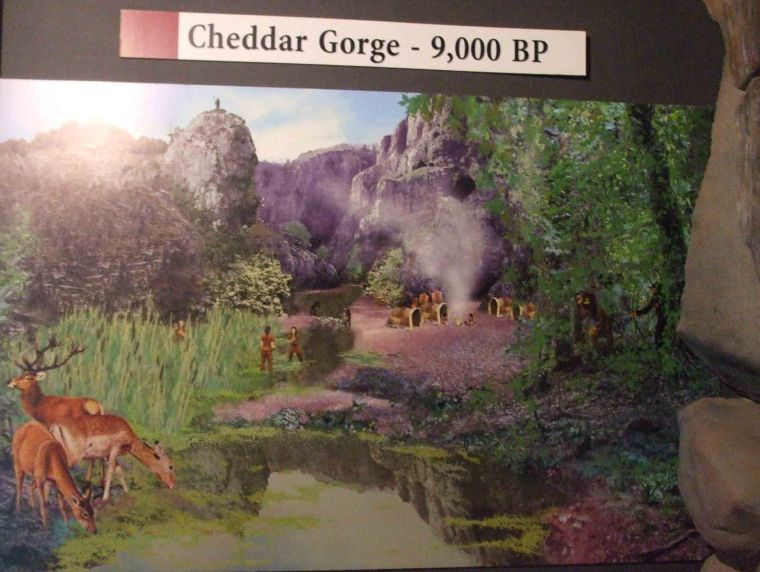 Artist's impression of the Cheddar Gorge 9,000 BP.