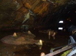 Stalagmites Gough's Cave 3