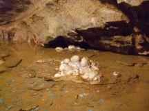 Stalagmites in Gough's Cave 1