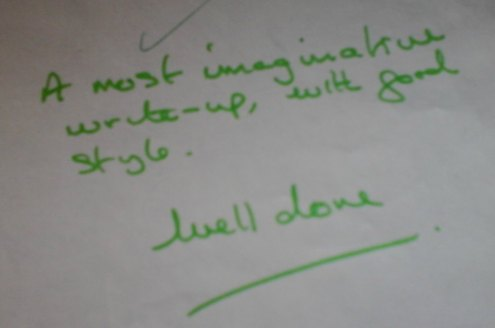 Tutor's comment on assignment