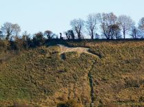 Broad Town White Horse, Wiltshire, which looks 'a bit grubby' (according to the photographer). It was created in 1864 by farmer, Will Simmons. Author: Brian Robert Marshall from geog.org.uk Creative Commons