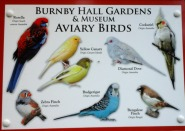 aviary-birds-at-burnby-july