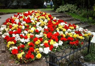 burnby-gardens-4-july