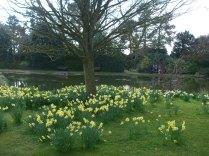 burnby-gardens-april-2