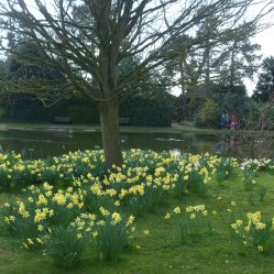 burnby-gardens-april-2