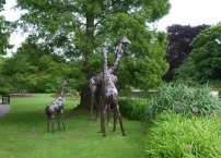 giraffe-sculptures-at-burnby-in-july