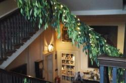 beanstalk-along-the-staircase