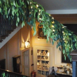 beanstalk-along-the-staircase