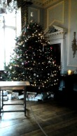 christmas-tree-in-great-hall