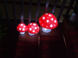 toadstools-on-the-staircase