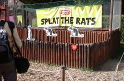 splat-the-rats-5