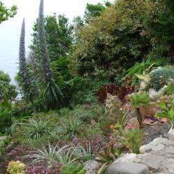 Terrace gardens 7