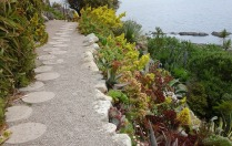 Terrace gardens 9