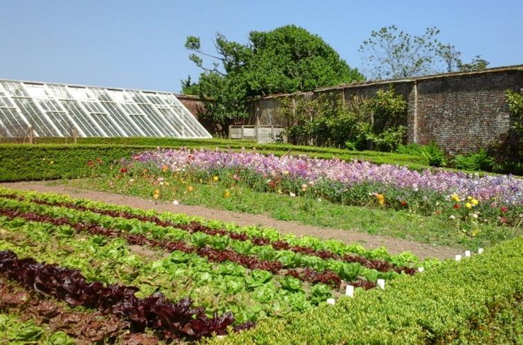 Walled kitchen garden at Heligan 2