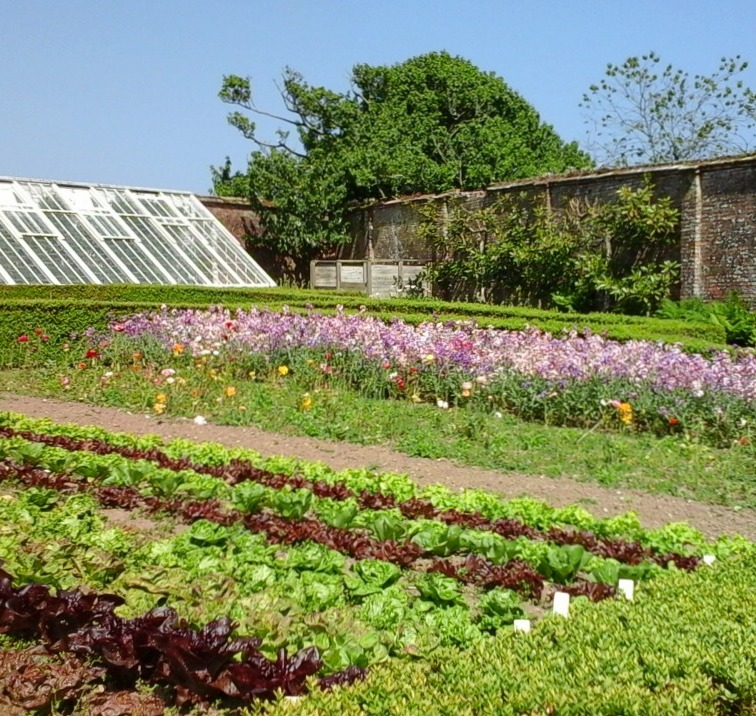 Walled kitchen garden at Heligan 2