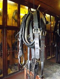 Livery stables 6