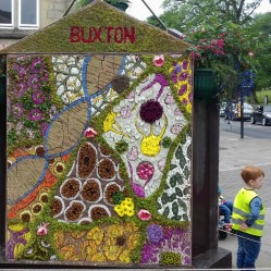 Buxton well dressing