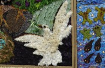 Hathersage close up of the dove on the well dressing