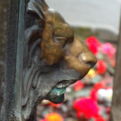 Lion decoration water spout on St Ann's Well, Buxton. Out of use while the well dressing is up.
