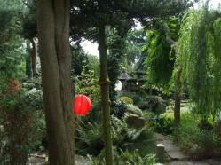 Garden 26