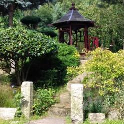Garden 36