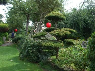 Japanese Garden 5