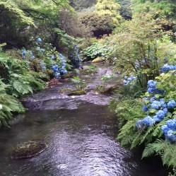 River Hiraethlyn 2