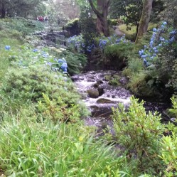River Hiraethlyn