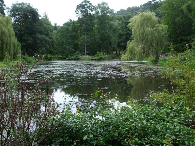 Skating Pond 1