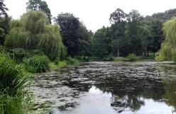 Skating Pond