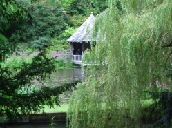 The Boathouse on Skating Pond through the trees