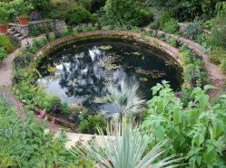 The Terrace Pond