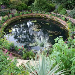 The Terrace Pond