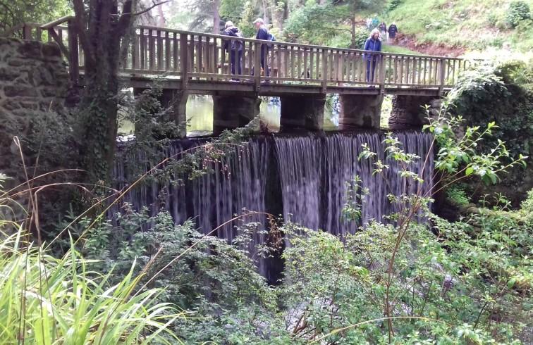 Waterfall Bridge 2