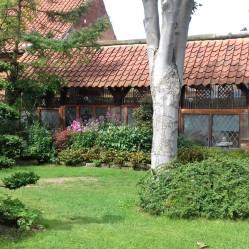 Zen Garden 1