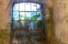 One of the window in the cellar corridor allowing fresh air in.