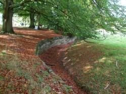 The ha ha full of autumn leaves