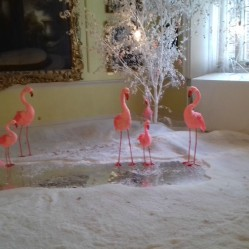 Flamingoesin the Long Gallery 2